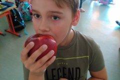 deň_jablka_8