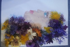 kvety_13