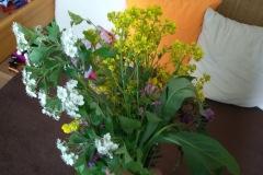 kvety_4