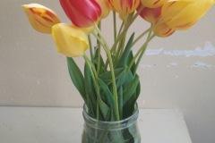 kvety_5