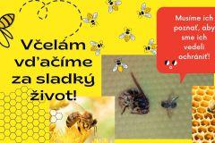 BUDÚCNOSŤ_3.časová kapsula_2.kategória