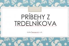 1617105807109_Ukazka-10